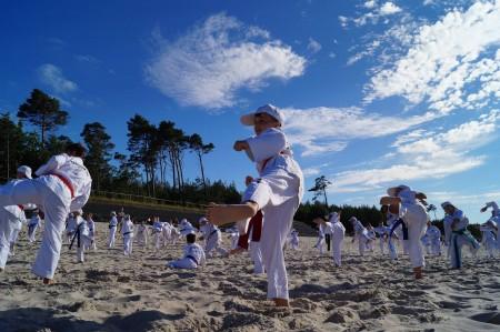 Taekwondo Gromowski Zajęcia sportowe dla dzieci w wieku szkolnym